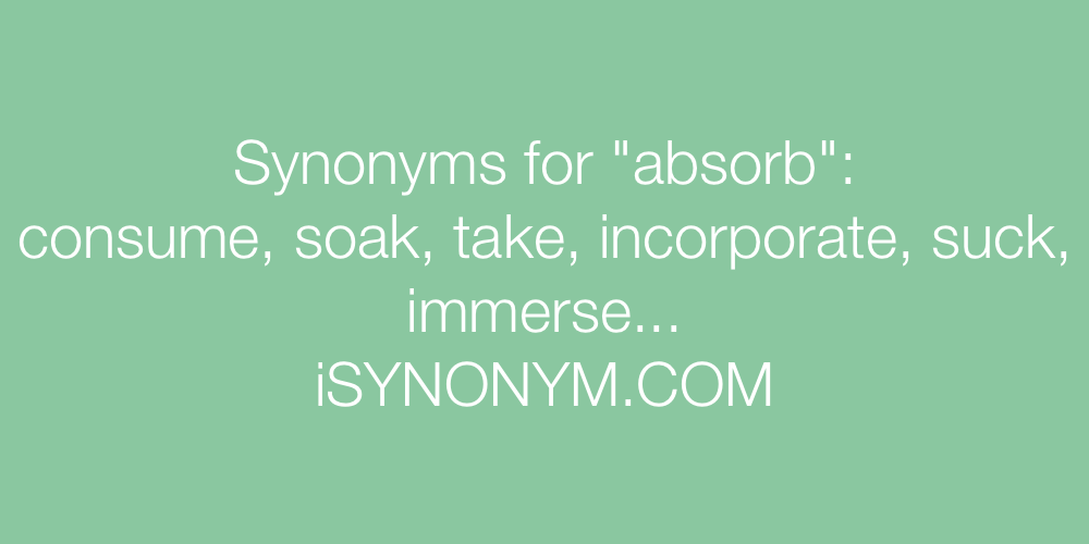 Synonyms absorb