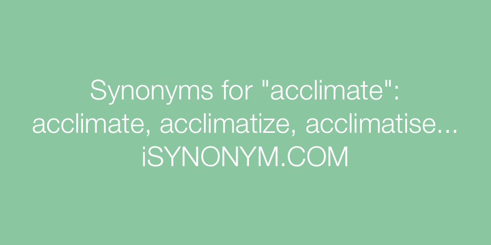 Synonyms acclimate