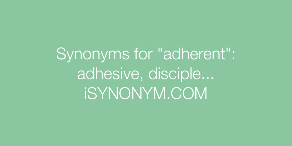 Synonyms adherent