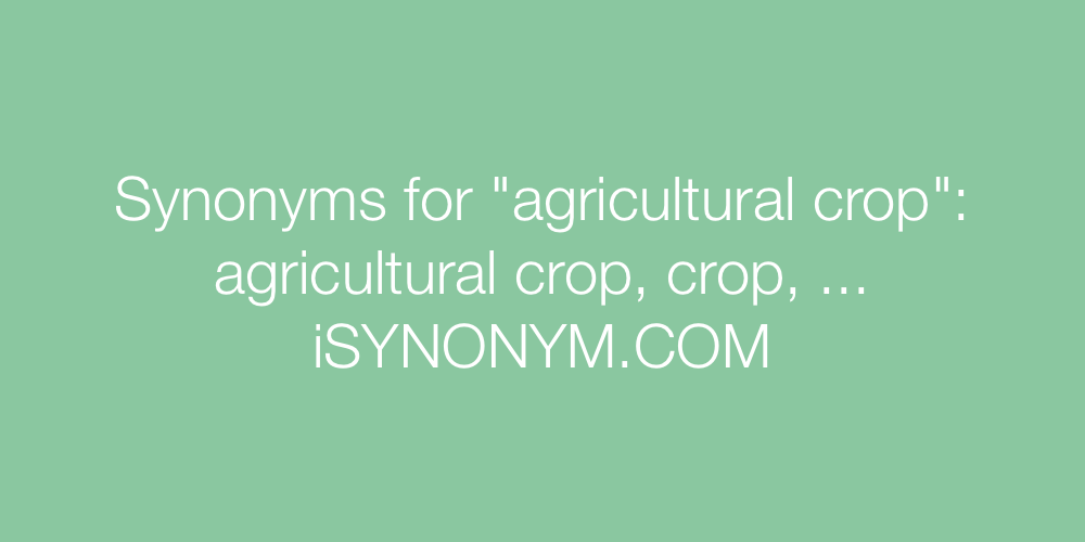 Synonyms agricultural crop