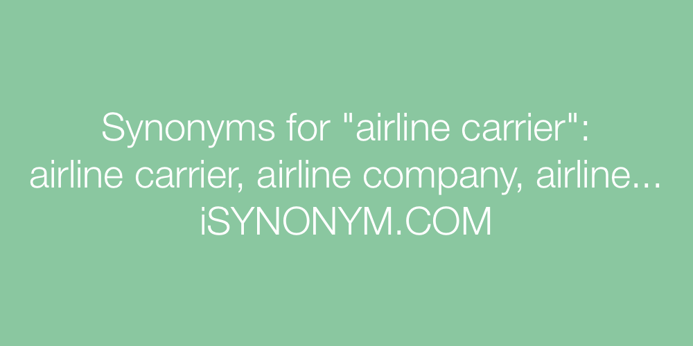 Synonyms airline carrier