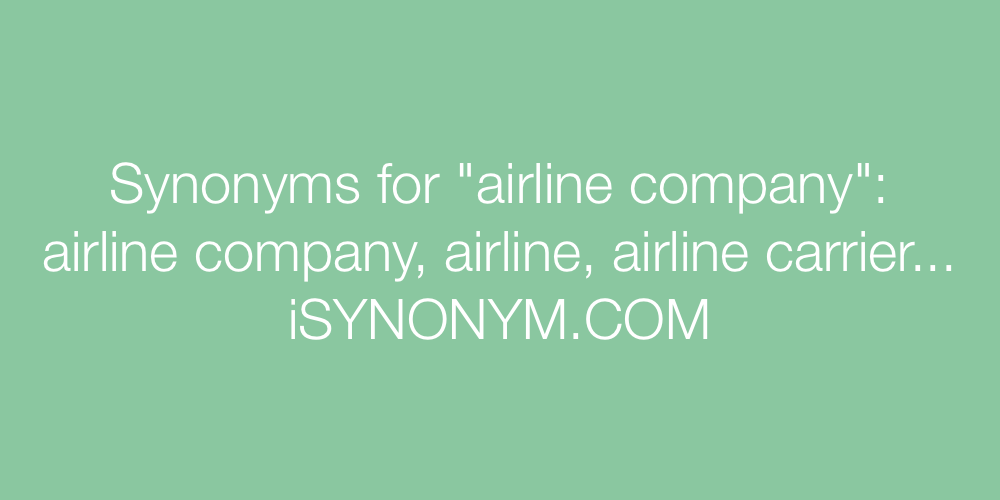 Synonyms airline company