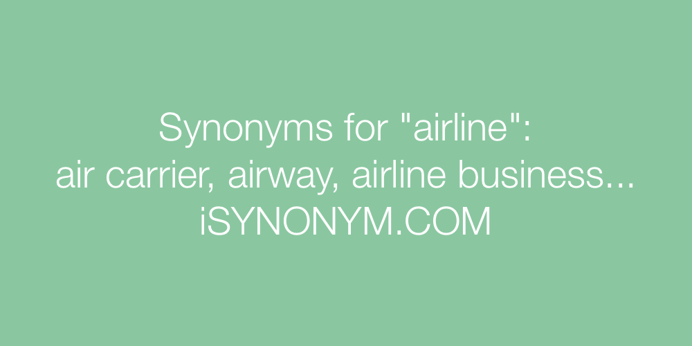 Synonyms airline
