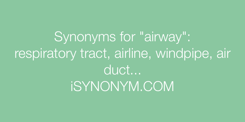 Synonyms airway