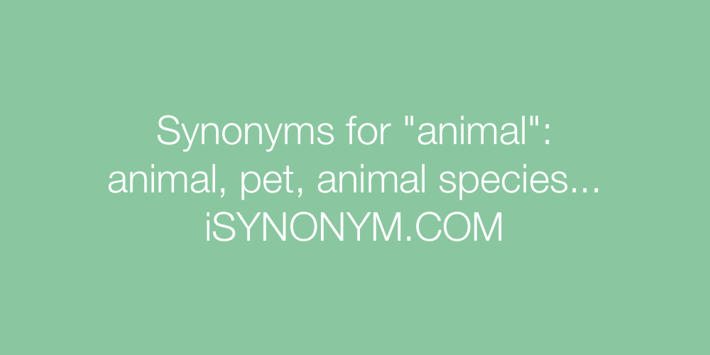 Synonyms animal