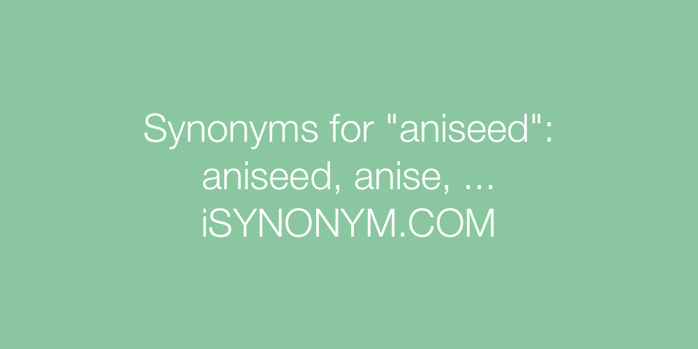 Synonyms aniseed