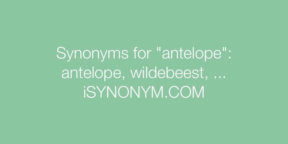 Synonyms antelope