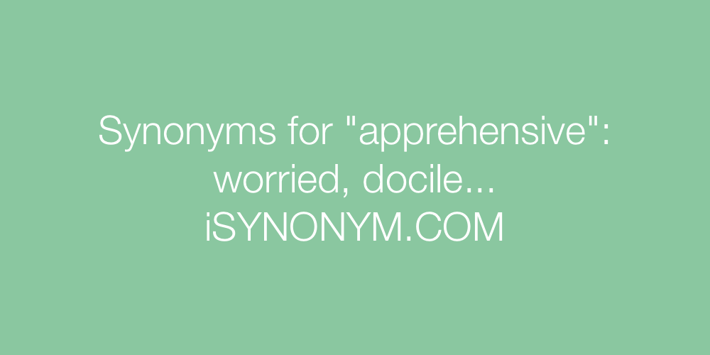 Synonyms apprehensive