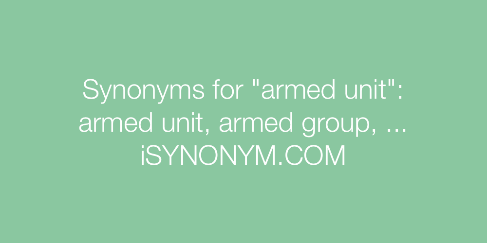 Synonyms armed unit