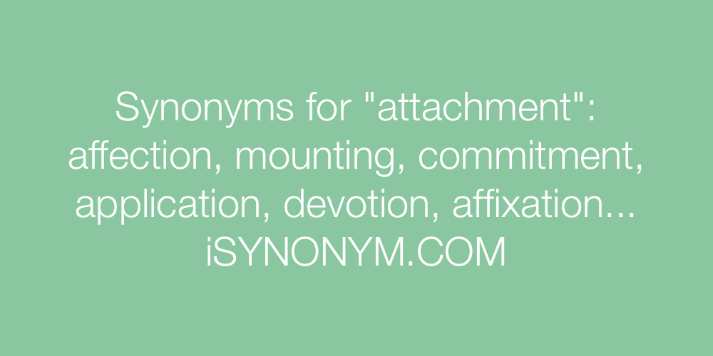 Synonyms attachment