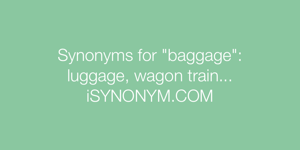 Synonyms baggage
