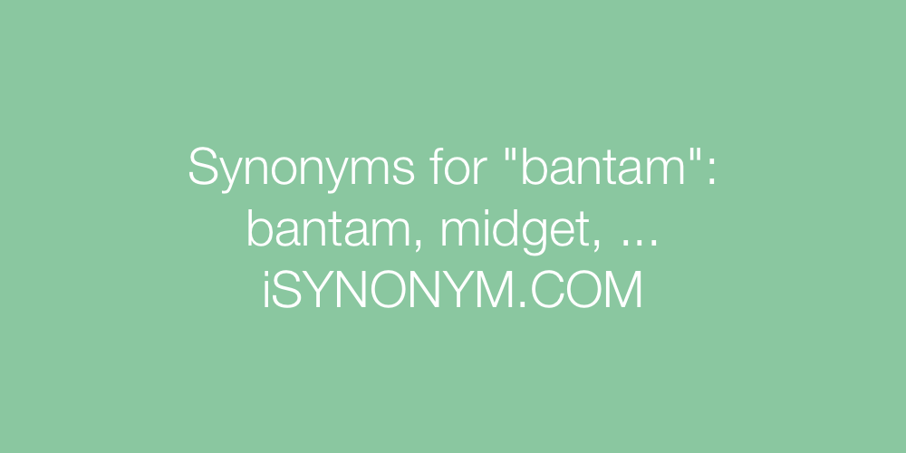 Synonyms bantam