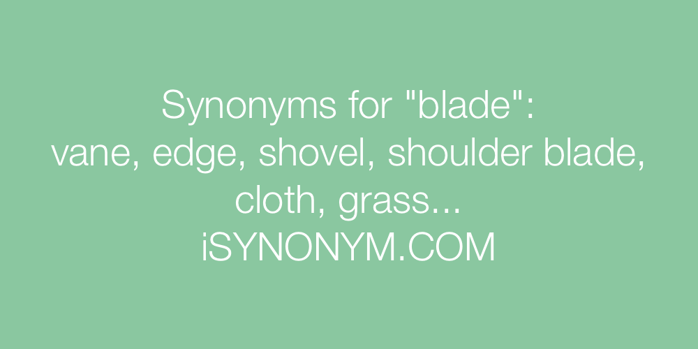 Synonyms blade