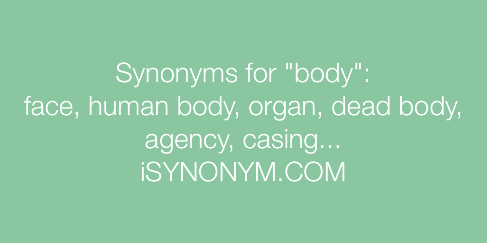Synonyms body