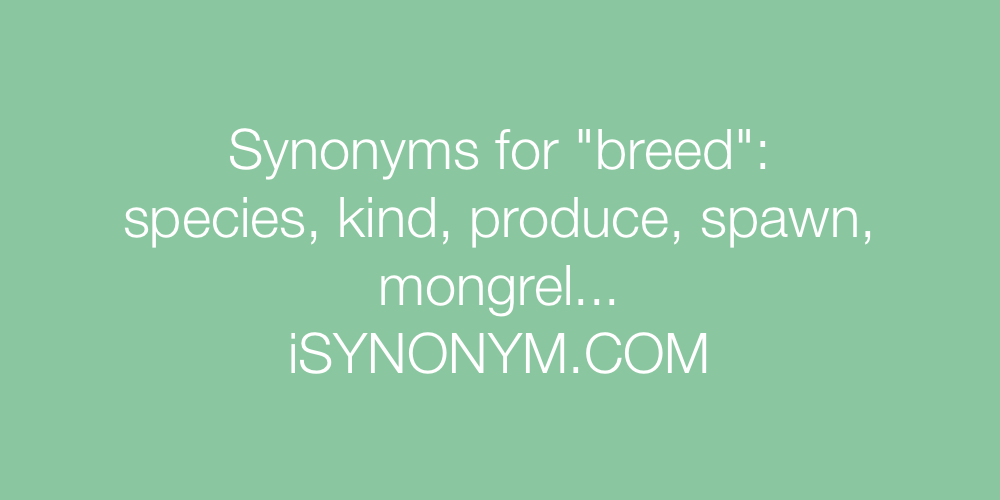 222 Words Related To Breed Breed Synonyms Breed Antonyms Word