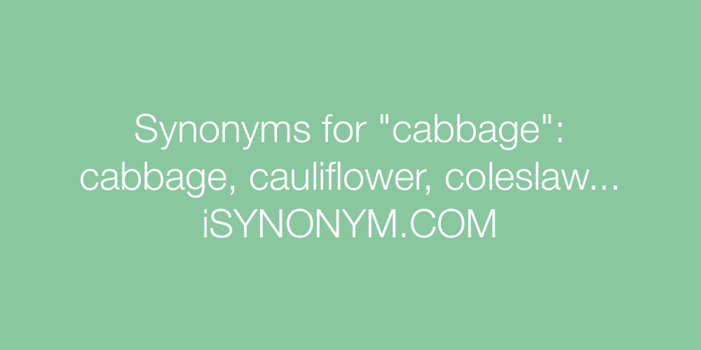 Synonyms cabbage