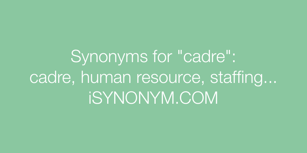 Synonyms cadre