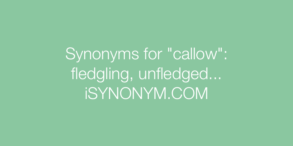 Synonyms callow