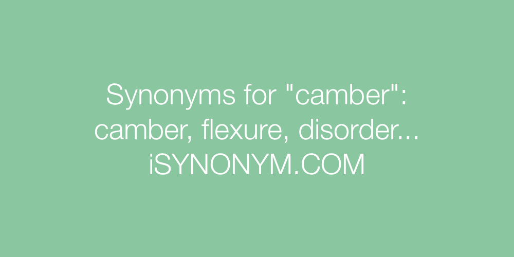 Synonyms camber
