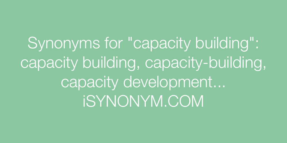 Synonyms capacity building