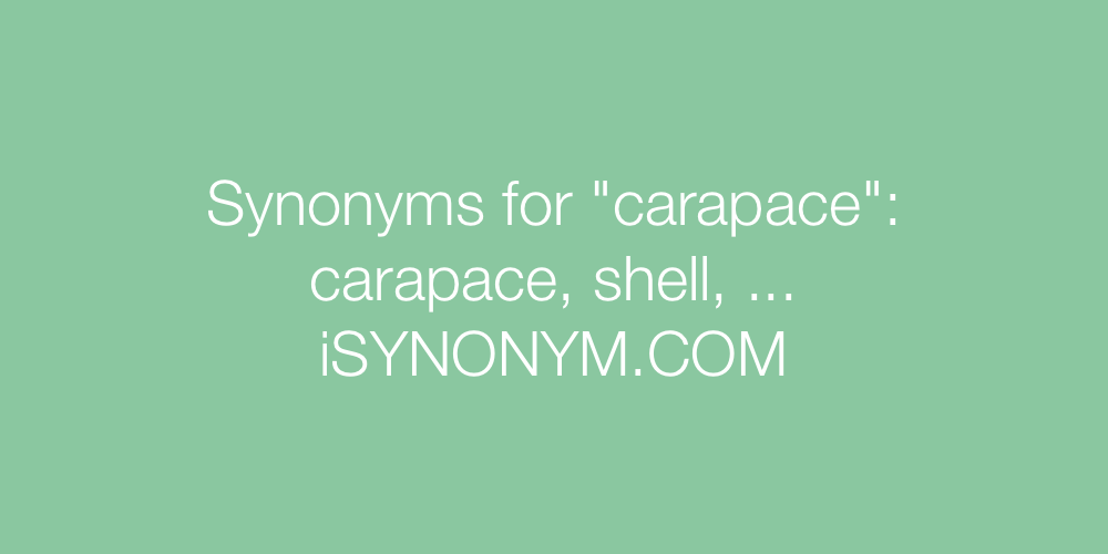 Synonyms carapace