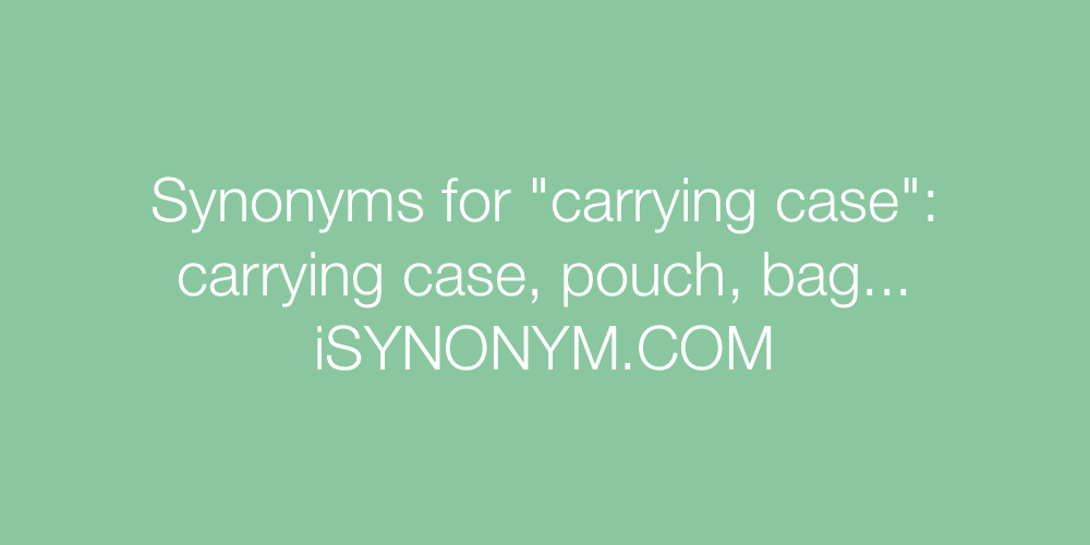 Synonyms carrying case