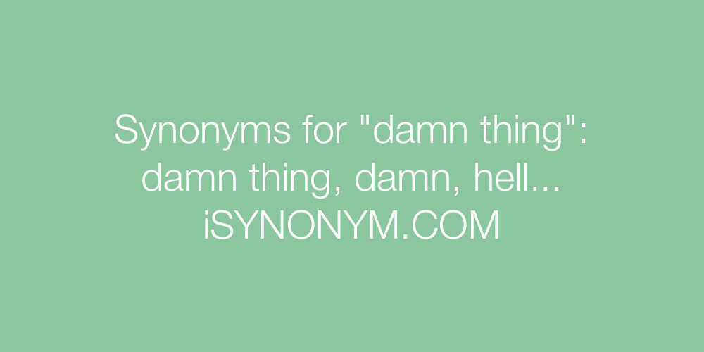 Synonyms damn thing