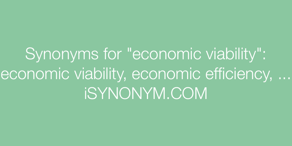 Synonyms economic viability