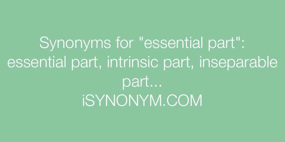 Synonyms essential part