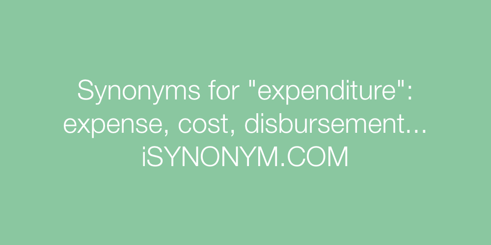Synonyms expenditure