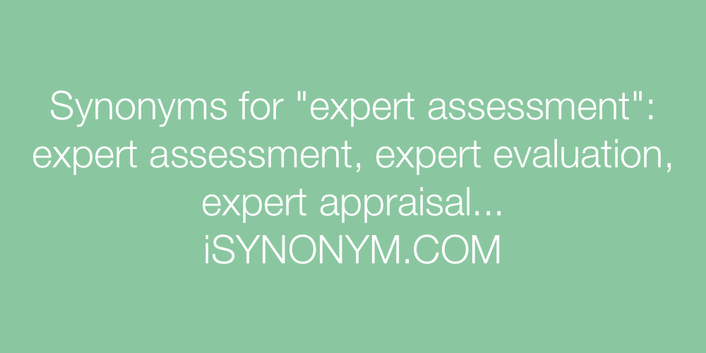 Synonyms expert assessment