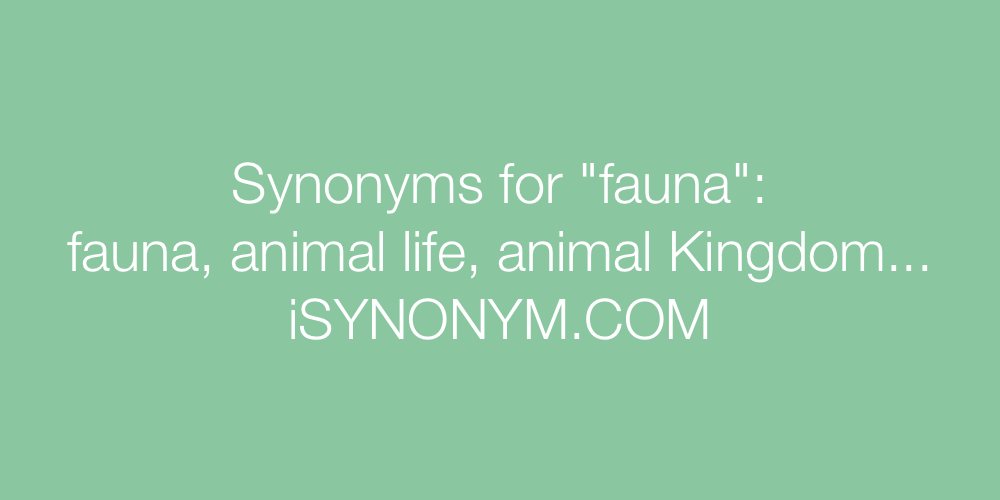 Synonyms fauna