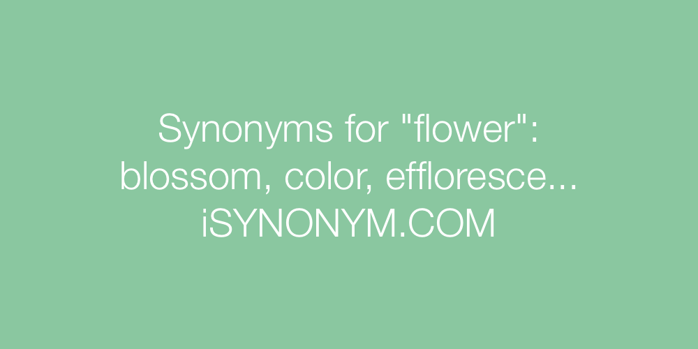 Synonyms for flower | flower synonyms - ISYNONYM.COM