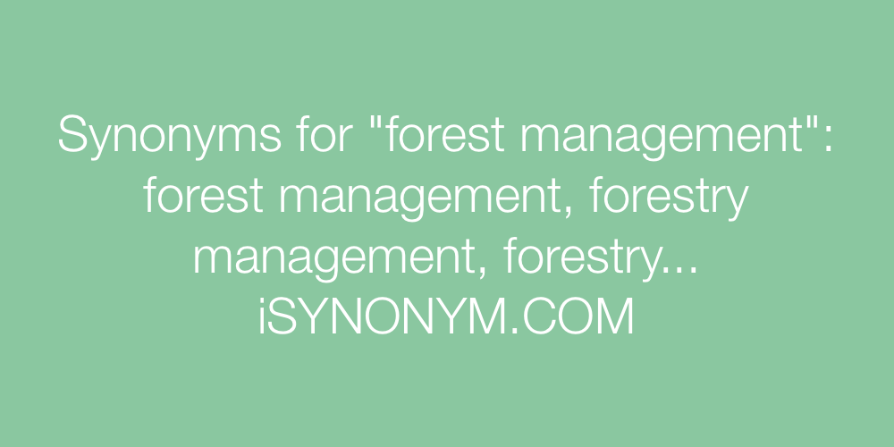 Synonyms forest management