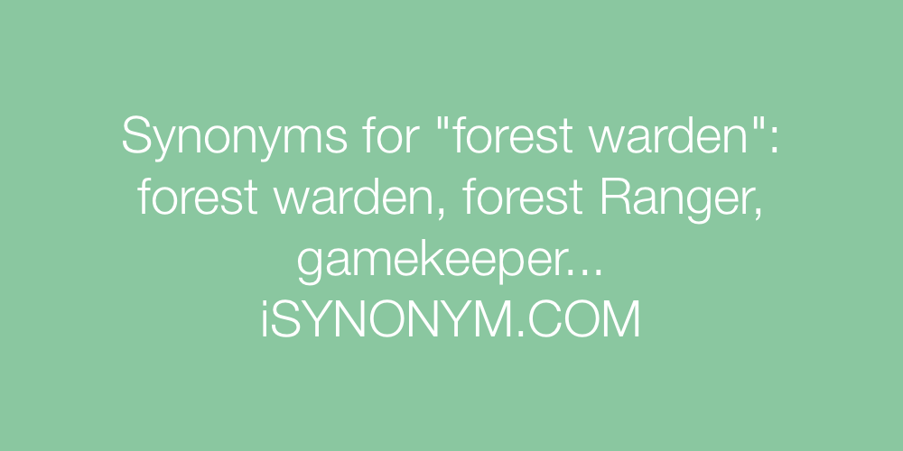 Synonyms forest warden