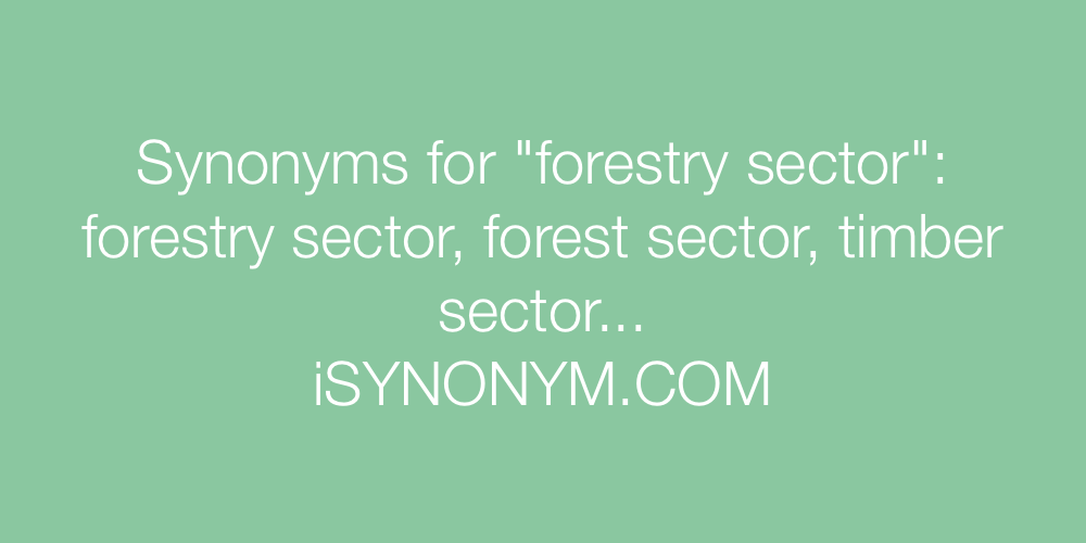 Synonyms forestry sector