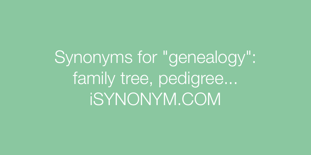 Synonyms genealogy