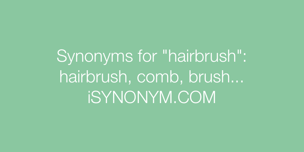 Synonyms hairbrush