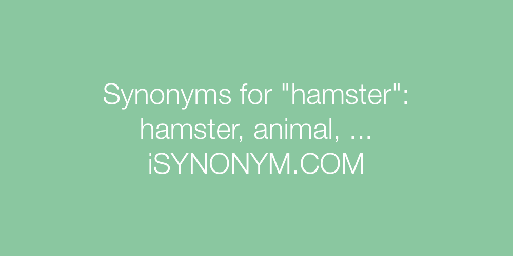 Synonyms hamster