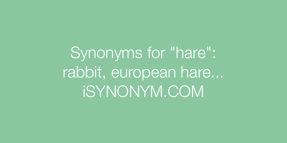 Synonyms hare