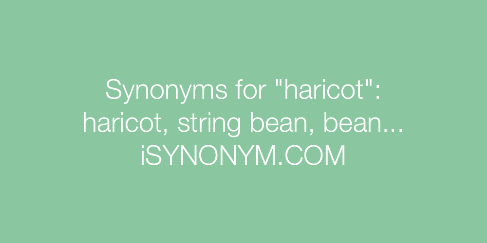 Synonyms haricot