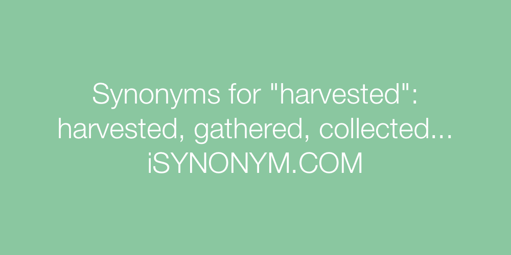 Synonyms harvested