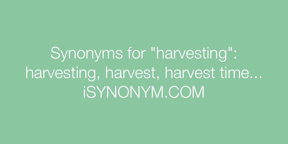 Synonyms harvesting