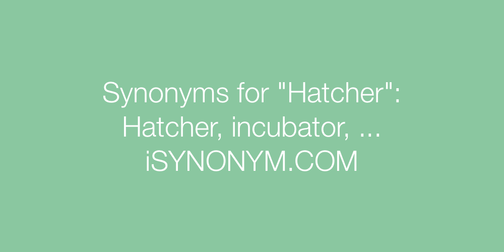 Synonyms Hatcher