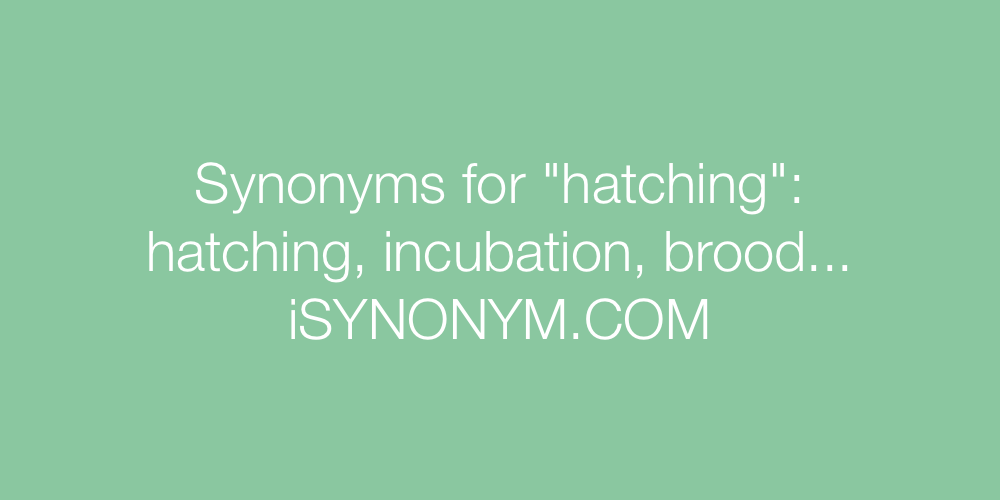 Synonyms hatching