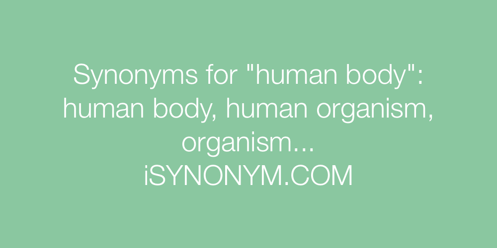 Synonyms human body