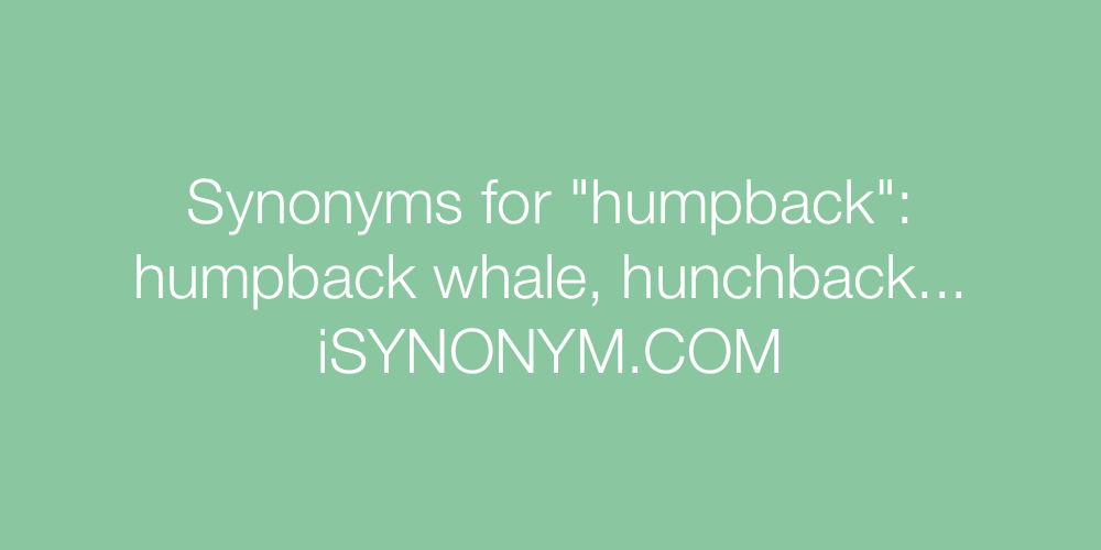 Synonyms humpback