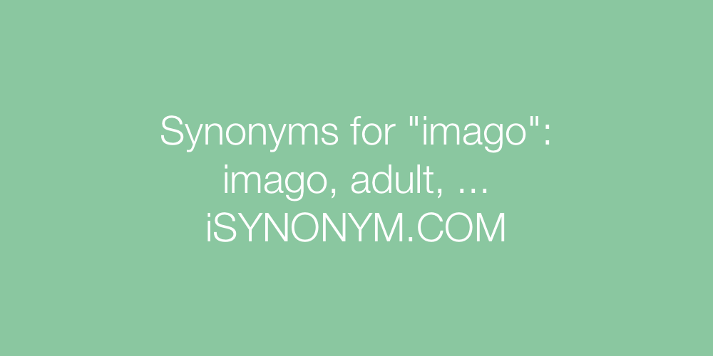 Synonyms imago