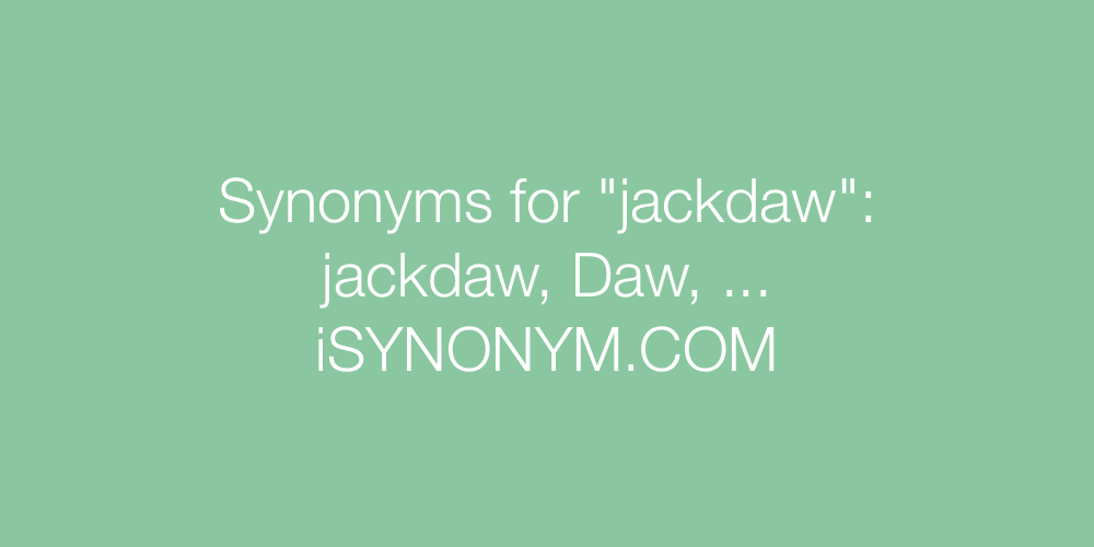 Synonyms jackdaw