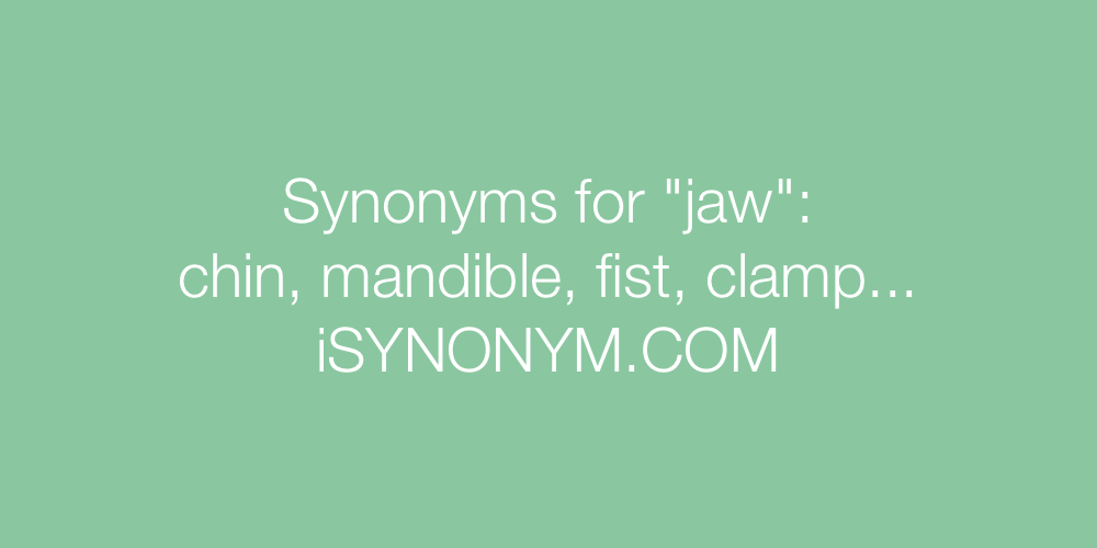 Synonyms jaw